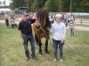 BIS och BIR nordsvenskbrukshäst