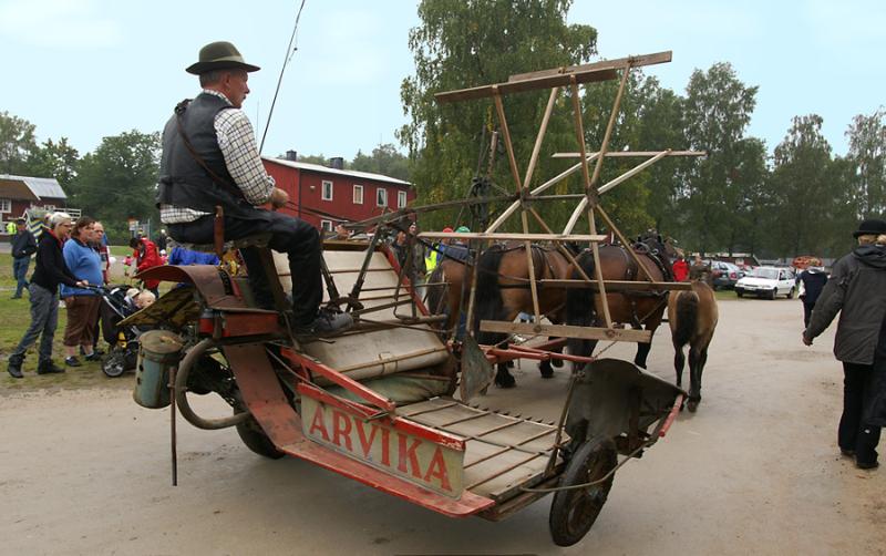 En Arvika självbindare dras av ett trespann hästar. Ett föl går